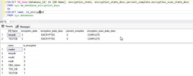 Check encryption state after TDE SCAN
