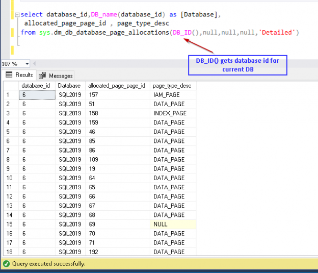 Execute DMV query sys.dm_db_database_page_allocations to get page details