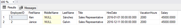 Executed SELECT statement using the view as the source in the FROM clause and showing the results returned