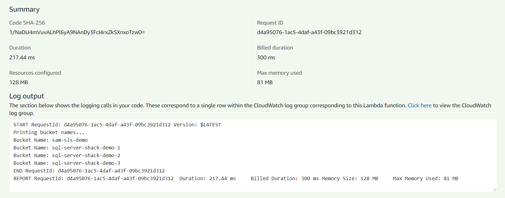 Executing the AWS Lambda Function